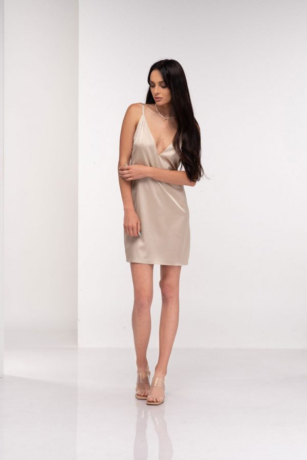 dress-Celine-(6)